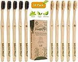 Bambus Zahnbürsten 10 Pack Holzzahnbürste Zahnbürste Holz Bambuszahnbürste Set 100% BPA Freie Nachhaltige Vegan Natur Natürlich Umweltfreundlicher Packung,für Beste Sauberkeit,für gesunde weiße Zähne
